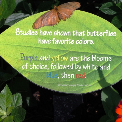 Green Butterfly Sign-L2H