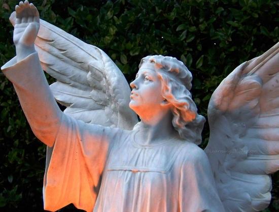 Angel Standing-L2H